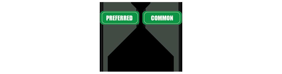 Preferred Shares VS Common Shares