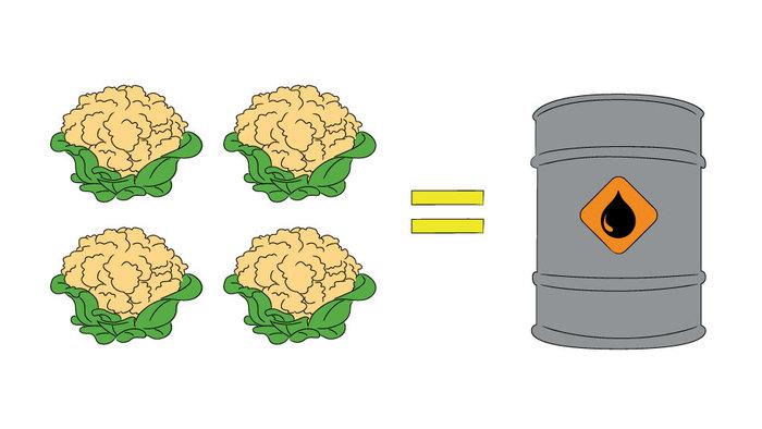 canadian-loonie-cauliflower